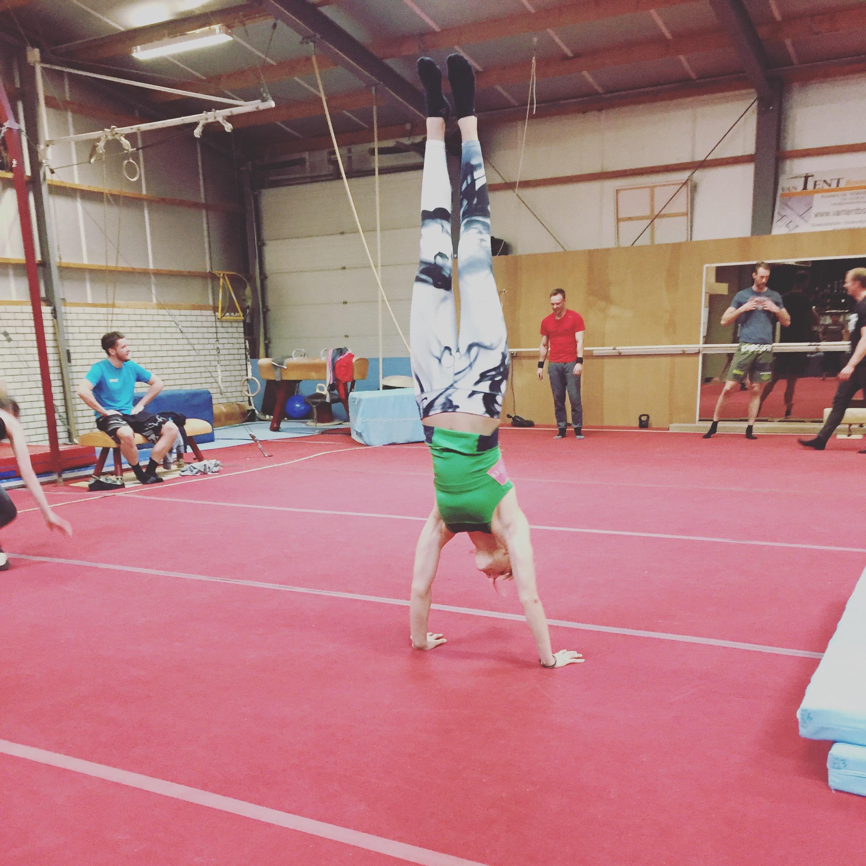 Gymnastic Clinic
